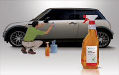 Cleaning spray 100ml